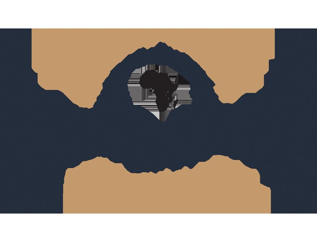 Hakuna Matata Dfw African Festival